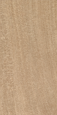 Q-Stone Sand Natural | 18x35 inch | Technical Porcelain | Floor | Code: 94393R