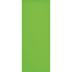Design Positive Vert Pistache #3 | 8x20 inch | Ceramic - Wall Tile | Commercial | Code: LOVEP3