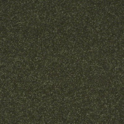 Chateau Margaux June Bug | 12ft wide | Carpet | Code: MACHMA323